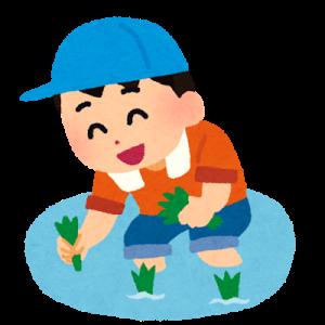 12㎏ 令和2年産 さがびより(5㎏x2袋 2kg×1袋)~佐賀県上峰町【ふるさと納税】