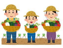 農家直送 程よい甘さのマクワウリ約4㎏~福岡県飯塚市【ふるさと納税】