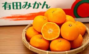 有田みかん しにせの味(3kg)~和歌山県有田川町【ふるさと納税】