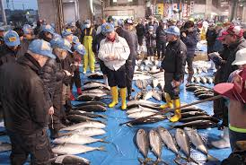 南城市海野漁港の競り体験とお魚調理教室~沖縄県南城市【ふるさと納税】