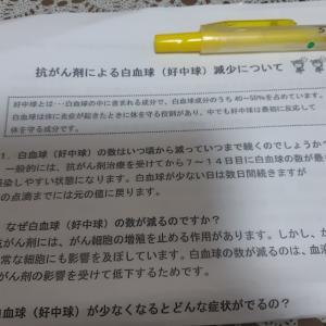 ddtc2クール③回目(・o・)