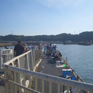 豊浜海釣り公園桟橋へアジ釣りに行ってきました。