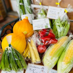 福岡の農家さん直送♪野菜マルシェ【たべもの+】