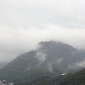 雨上がりの臥牛山 -Mt.Gagyuu after a rain-