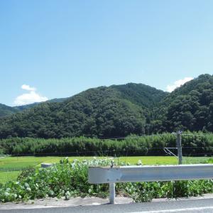 平成30年豪雨が起こる前の日常風景 -高梁川-