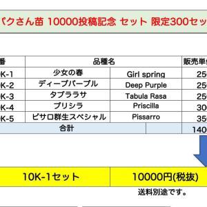 パクさん苗10000pic記念セット