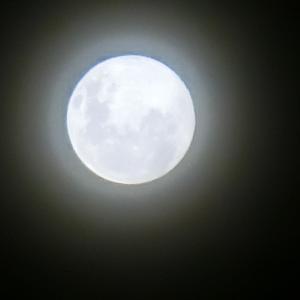 バリ歴の満月が美しかった&琥珀のカボションをリングにされると素敵です(^_^)