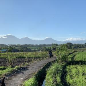バリ島バトゥカル山が綺麗&ピュアな心を持つブルートパーズ&コインSV925ネックレス