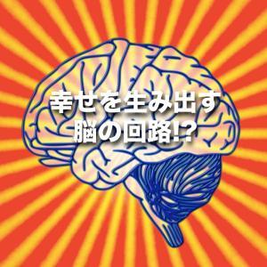 幸せ脳力の高め方!!【音声・動画配信】