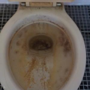 トイレの尿石取り&浴室カビ取り(鹿児島市の水まわりクリーニング)