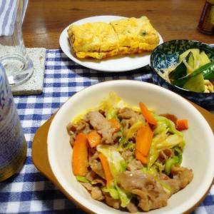 7/6(月)肉野菜炒め  7/7(火)春雨入り大根炒め