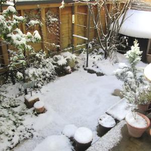 雪降る日曜日の 朝・昼・オヤツ・晩ごはん