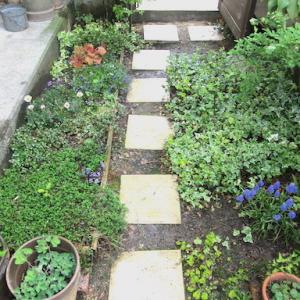 庭が おしえてくれること
