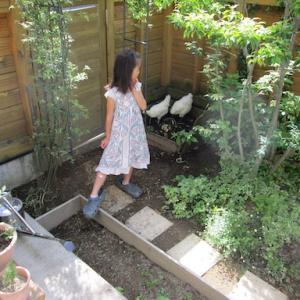 小さな庭の 小さな思い出