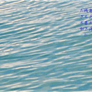残る暑さ  海