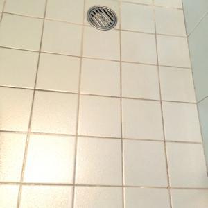 トイレのお掃除も毎日すると気持ちいいよー❣️