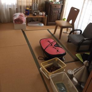 昨日は整理収納サポートサービスでした❣️可愛いママとわんちゃんがお出迎え〜