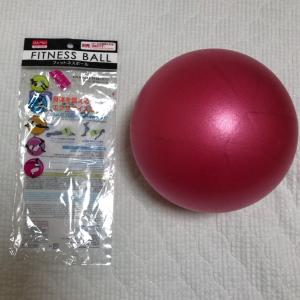 ダイソーのミニバランスボールでリハビリ始めたら思いのほか使いやすい