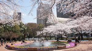 【日本を代表する高級ホテル 御三家1】『帝国ホテル東京 』20190322