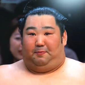 相撲のおかげで奈良が注目されてる。。。。