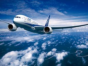 ANAのコードシェア便の合計マイル
