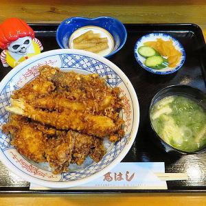 函館市五稜郭町 うなぎ処だけど元々は天ぷら屋だからね「高はし」