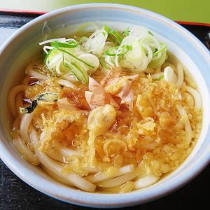 函館市石川町 うどんぐらいしか食べる気がしない日には「渡邊うどん」