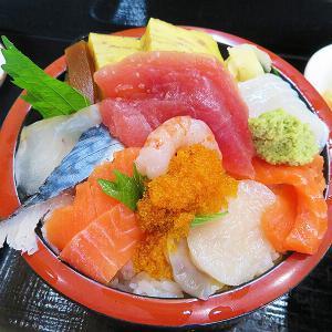 函館市本町 1人でも入りやすい個人経営系寿司店「鮨のながい」