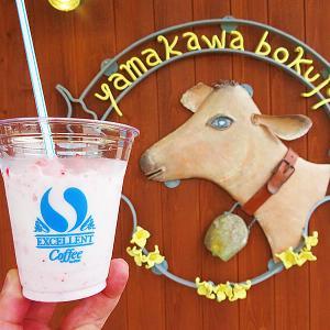 七飯町大沼 いちごスムージーがミルキー美味い「山川牧場 ミルクプラント」
