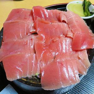 森町 間違えて注文した中トロ丼が美味すぎるから!「割烹 やなぎ」