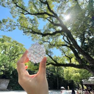自然に触れる二日間、熱田神宮と農園DAY