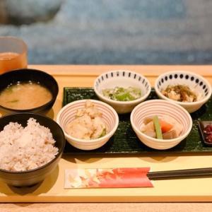 春の京都ひとり旅13★京菜味 のむら