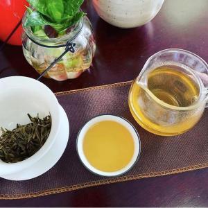 中国茶お味見レポ 黄茶編