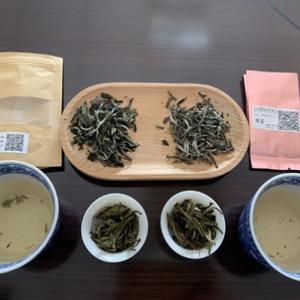 中国茶お味見レポ 白茶編