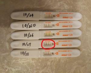 多嚢胞性卵巣症候群からの排卵成功!卵胞期にやってよかったことまとめ