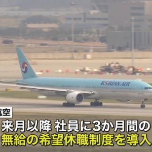"""【韓国航空会社赤字】大韓航空""""業績悪化""""日本路線の急減で?"""