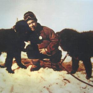 【絶滅】樺太犬 絶滅か 日本、秋田犬と交雑進む 旧ソ連、大食いで殺処分