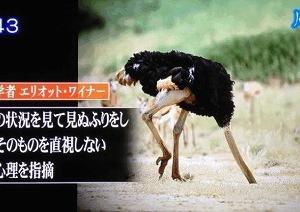 断酒25日目 「酒とダチョウ症候群」