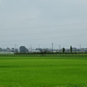 夏空を追いかけて北海道・・・㉓新潟、福島経由で帰ろう