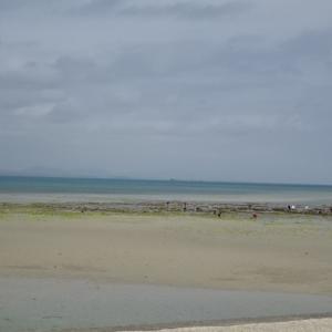 3月沖縄・・・⑥東海岸から海中道路「キンタコ食べたい♪」