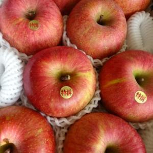 待っていた…おリンゴ♪
