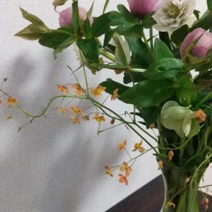 庭の花を摘んで飾る