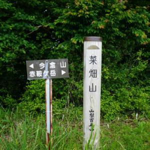 菜畑山/赤鞍ヶ岳/二十六夜山