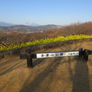 二宮吾妻山公園