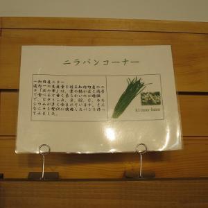 函館旅行9  あすなろパン工房しりうち店