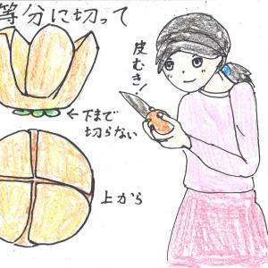 柿の食べ方スタンダート