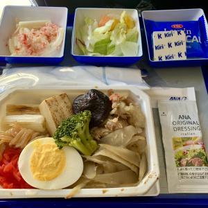 ANA国際線機内食 NH875 Y 名古屋香港 NGOHKG エコノミー JUL19 誰得ブロッコリー問題