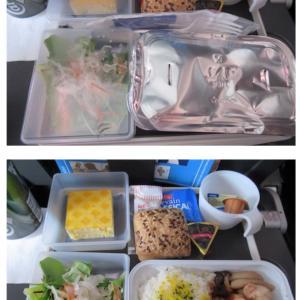 スカンジナビア航空機内食 SK984 Y 成田コペンハーゲン NRTCPH エコノミー JUN19
