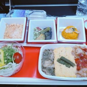 JAL国際線機内食 JL037 PY 羽田シンガポール HNDSIN プレミアムエコノミー AUG19