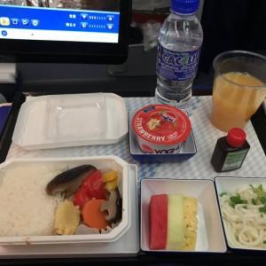 ANA国際線機内食 NH816 Y クアラルンプール成田 KULNRT エコノミークラス SEP19